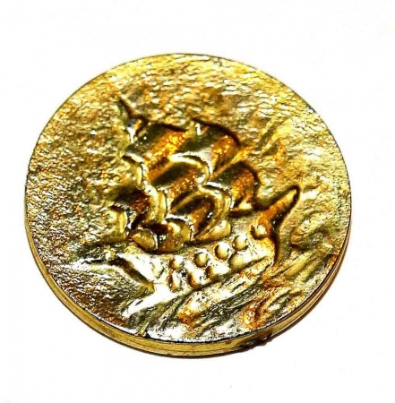 GoldCoinBoatwebsized